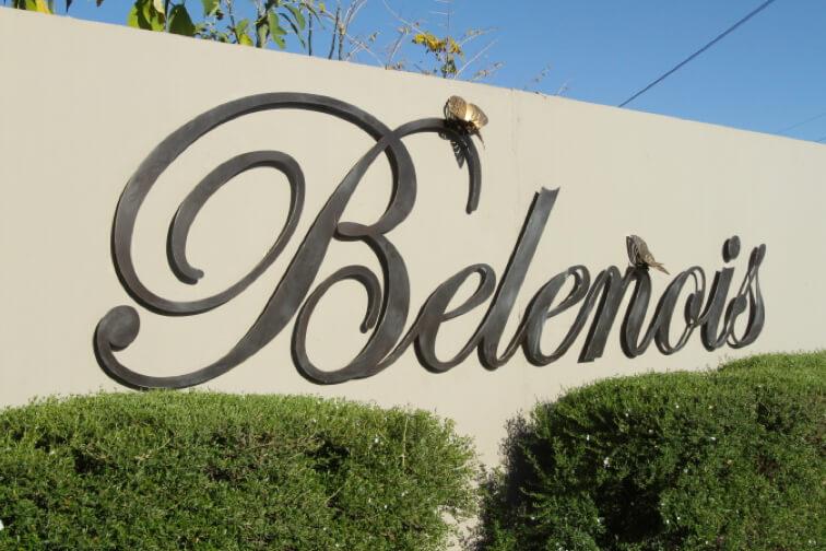 Belenois-gallery-1
